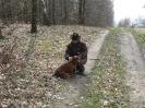 2009 - Polsko, Regionalne konkursy psow dzikarzy
